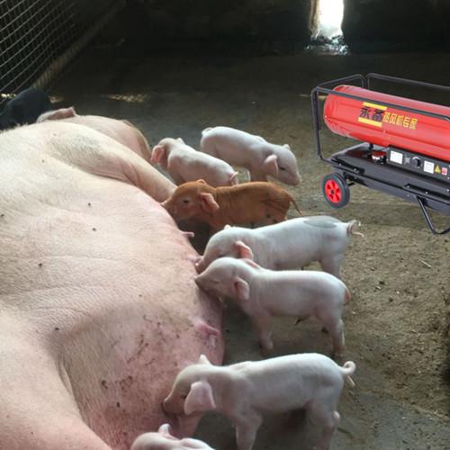 猪舍热风机 养殖升温设备 养殖暖风机